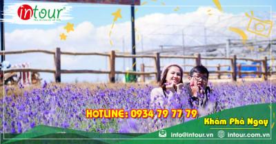 Tour Nha Trang - Đà Lạt khởi hành từ Cà Mau 4 ngày 4 đêm