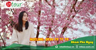 Tour du lịch Lạng Sơn - Nha Trang - Đà Lạt 4 ngày 3 đêm