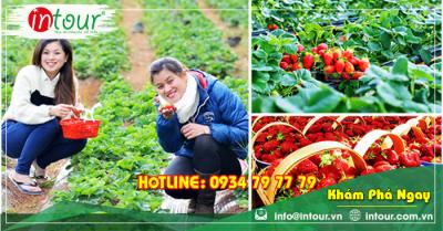 Tour du lịch Đồng Tháp đi Nha Trang - Đà Lạt 4 ngày 4 đêm