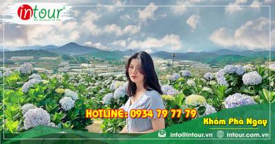Tour du lịch Đà Lạt khởi hành từ Bình Thuận 2 ngày 1 đêm