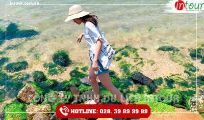 Tour du lịch Nha Trang - Khánh Hòa - Đà Nẵng - Cù Lao Chàm - Hội An - Bà Nà - Huế 5 ngày 4 đêm