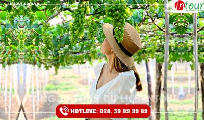 Tour du lịch Quảng Ngãi - Phan Thiết - Mũi Né 3 ngày 2 đêm
