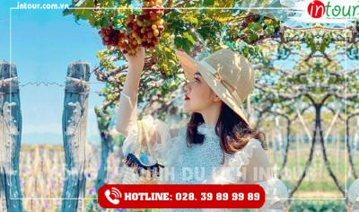 Tour du lịch Quảng Trị - Phan Thiết - Mũi Né 3 ngày 2 đêm