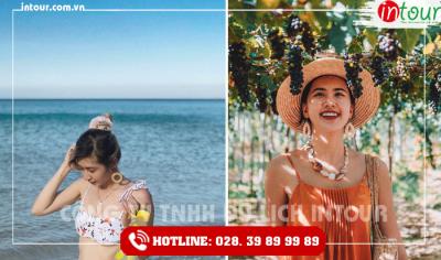 Tour du lịch Bà Rịa - Vũng Tàu - Ninh Chữ - Vĩnh Hy 3 ngày 2 đêm
